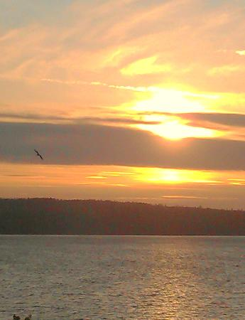 Camano Island Inn: Sunset view from room