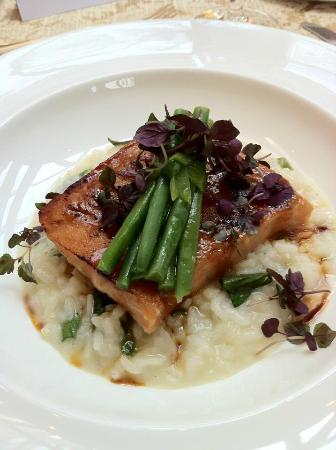 Four Seasons Hotel Washington, DC: Miso Salmon Over Risotto with a Bouquet of Asparagus