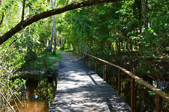 Hotel Vila dos Orixas: Hotel Bridge