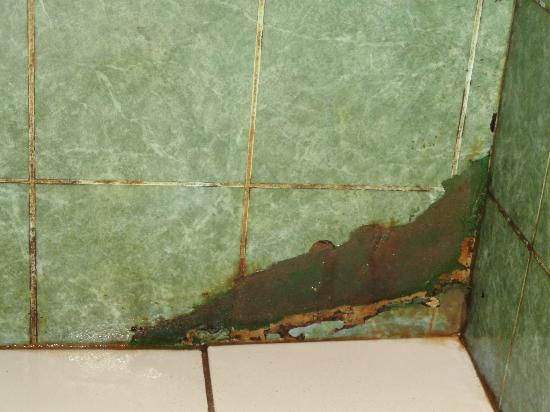Cabinas Punta Uva: shower walls soaked behind the tile, falling apart