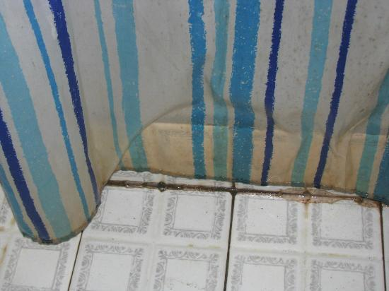 Cabinas Punta Uva: shower curtain in need of replacement