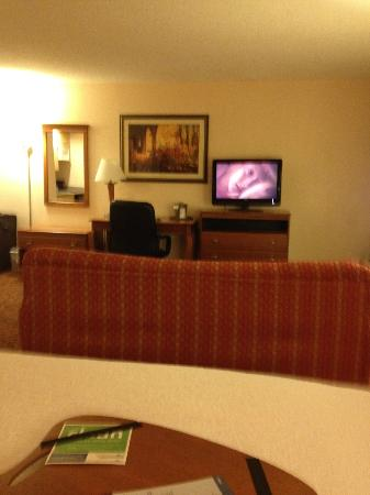 Hampton Inn North Myrtle Beach - Harbourgate : View from bed