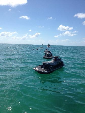 Jetski Tours Of Miami Snorkeling Tour