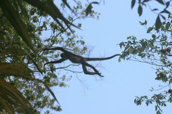 Nitun Private Reserve 사진
