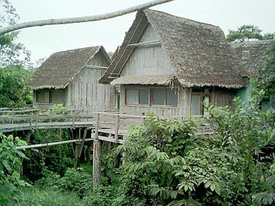 Guajara-Mirim, RO: Foto de Alexandre Marcos de Carvalho em Pakaas