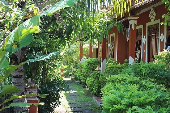 Mumbul Guesthouse: We love gardening at Mumbul!