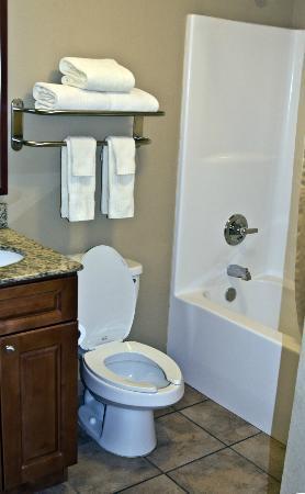 Candlewood Suites Perrysburg : Bathroom
