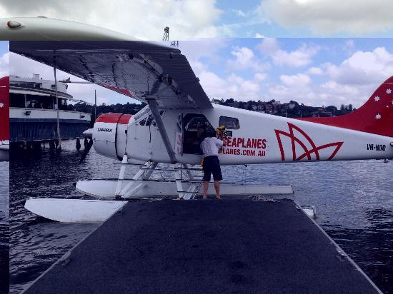 Sydney Seaplanes: Jarrad the pilot