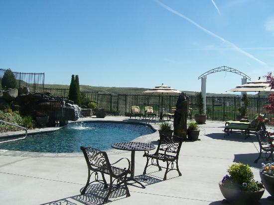 Cameo Heights Mansion Bed & Breakfast: Pool area