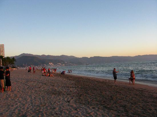 Vallarta Torre: View from the beach front