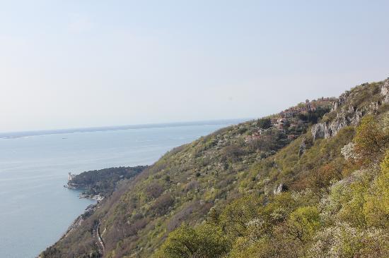 Tempio Mariano di Monte Grisa : Panorama