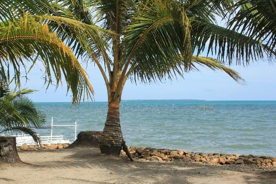 Cooper S Beach Resort Upper Level Of