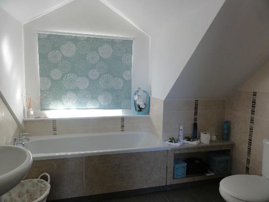 Pen Llyn Bed and Breakfast : Bathroom - spotless!