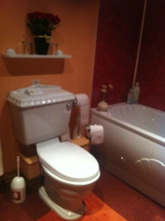 The Ginney Country Guest House & Holiday Cottages : Bathroom