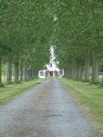 La Beauconniere: A view from the main drive
