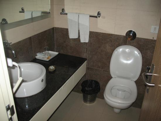 Silver Ferns Hotel: Bathroom