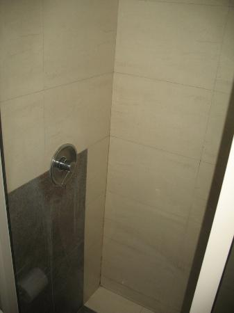 Silver Ferns Hotel : Shower