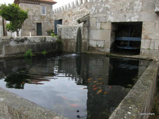 Estalagem da Boega: les poissons