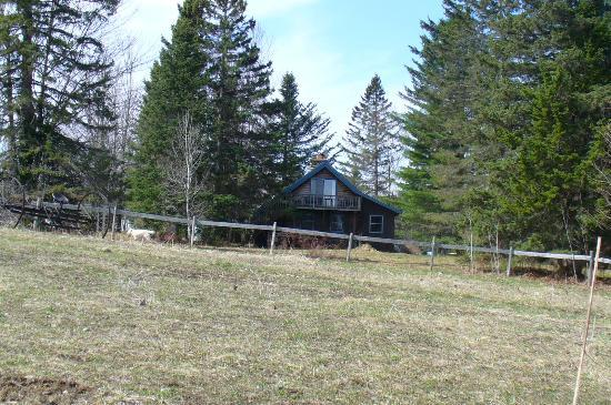 Eden Mountain Lodge: rear view