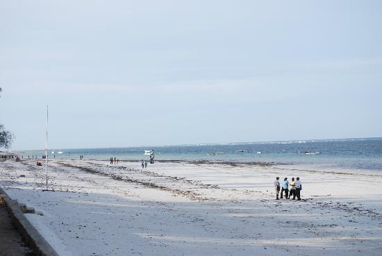 Diani Sea Resort: Beautiful quiet beach