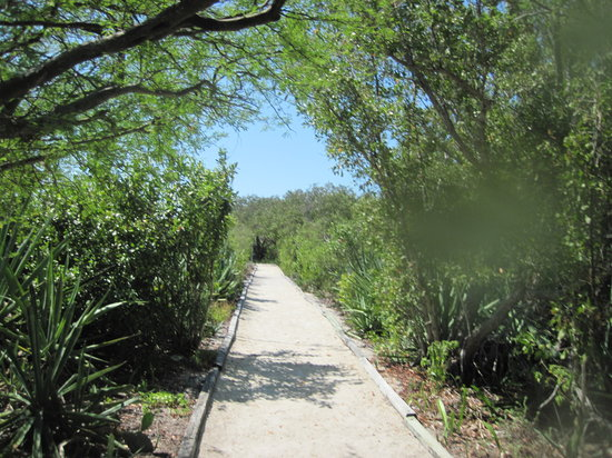 Indian Key State Historic Site : well maintained trail
