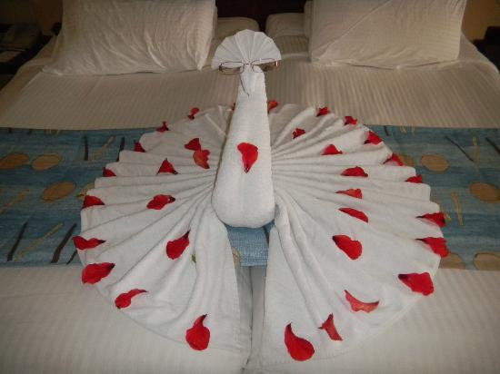 ‪كورال سي هوليداي فيليدج: Towel art Peacock‬