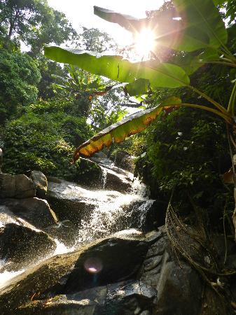 Akha Hill House: The waterfall