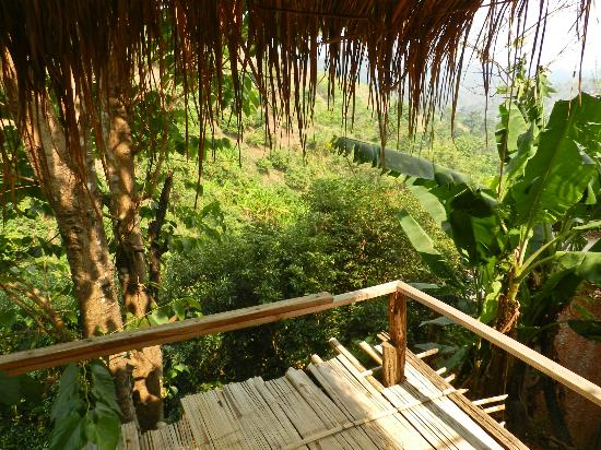 Akha Hill House: The view from the deck