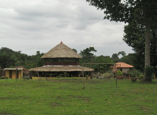 Amazon Turtle Lodge-billede