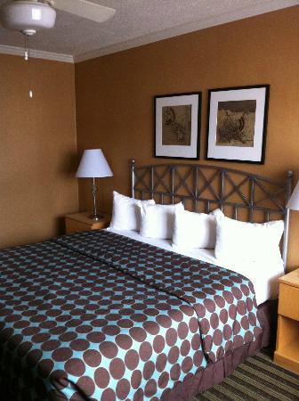 Civic Center Motor Inn: Kingsize Bett (sehr kleine Kissen und keine richtige Decke)