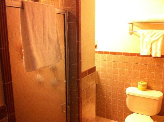 Civic Center Motor Inn: Bad (links Duschkabine, um die Ecke Waschbecken und Föhn)
