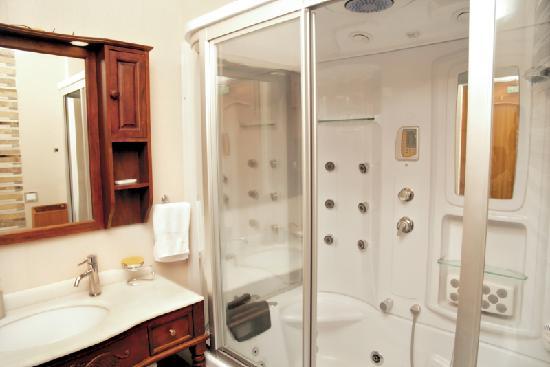 India Luxury Homes: Bathroom