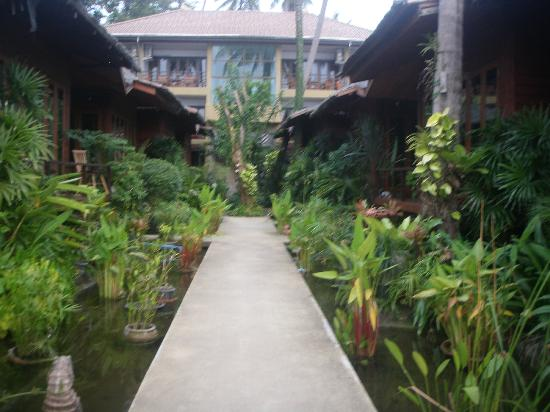Lipa Bay Resort: Hotel grounds