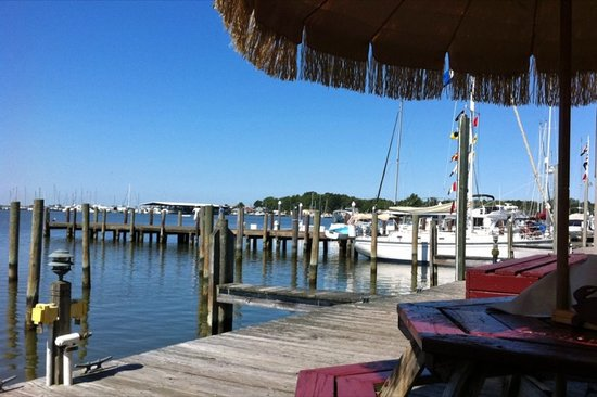 Waterman's Crab House: Our wonderful view for lunch