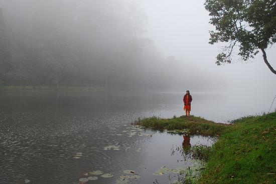 Misty Kodaikanal Lake Picture Of Kodaikanal Lake Kodaikanal Tripadvisor