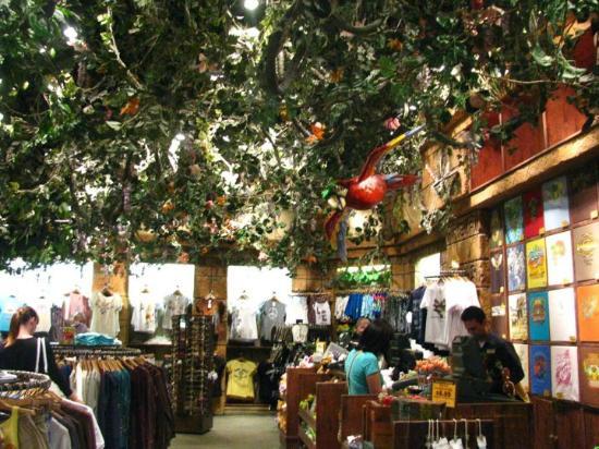 Rainforest Cafe: Inside the giftshop