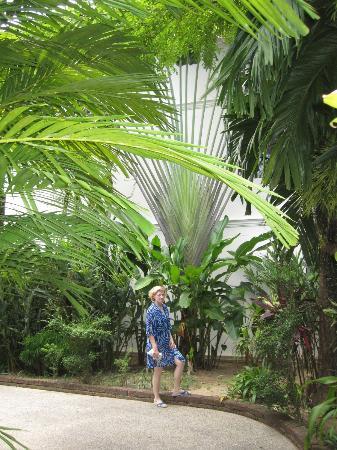 Nang Thong Bay Resort: Im Garten der Anlage