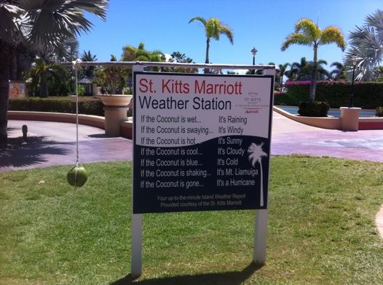 St. Kitts Marriott Resort & The Royal Beach Casino: Up to date weather report everyday