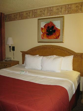 Pan American Inn & Suites: Room (view 2)