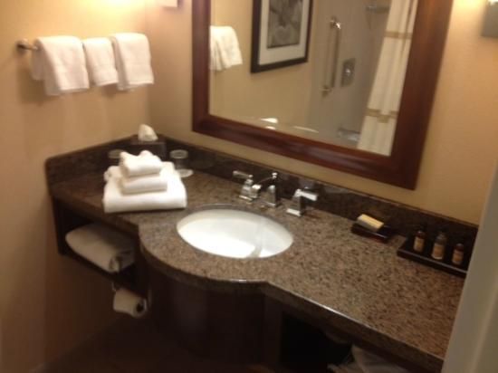 Atlanta Marriott Buckhead Hotel & Conference Center: bathroom sink