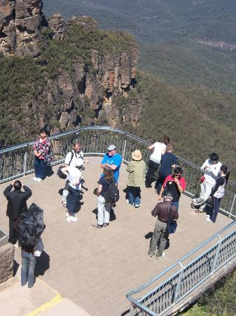 Blue Mountains Canyon and Wildlife Discovery Tour: The Blue Mountains below