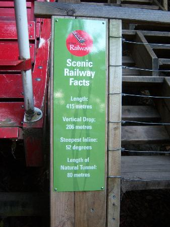 Blue Mountains Canyon and Wildlife Discovery Tour: The Scenic Railway (incline) facts...