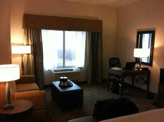 Hampton Inn by Hilton Sydney: Room 1