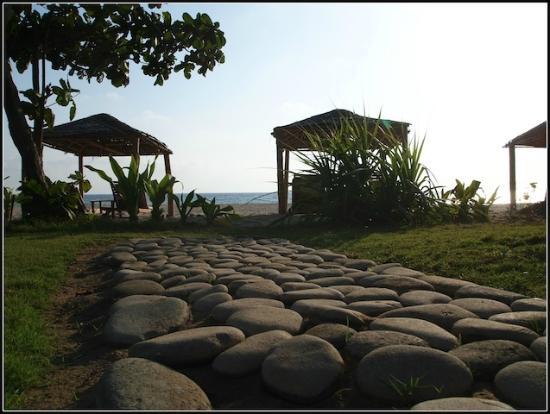 The Palm Beach Resort : View