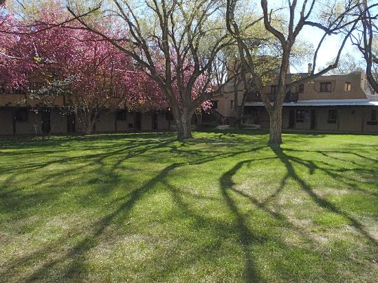 Sagebrush Inn & Suites: Courtyard