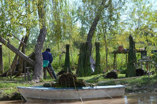 Safari Delta: Scène de la vie quotidienne