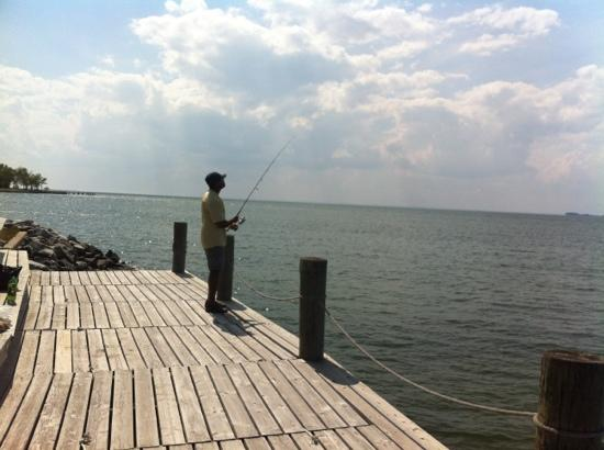 Wades Point Inn on the Bay : Catching rockfish off the dock