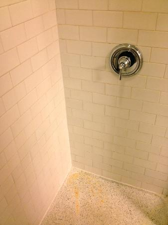 Fairfield Inn & Suites Albany Downtown: Shower