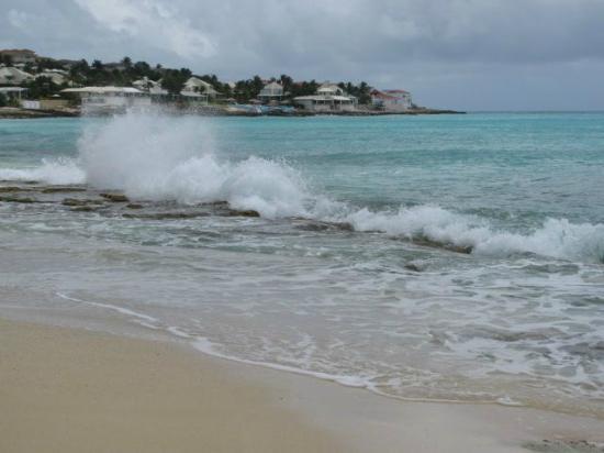 Flamingo Beach Resort : Une plage pour promenade seulement-proche de la réception