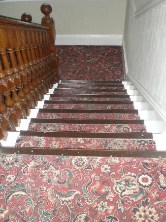 Edinburgh House Hotel: Interni - bellissima moquette